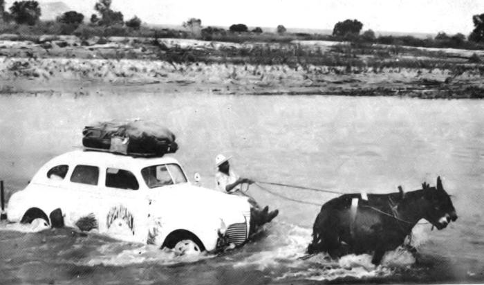 Mules pull the car accross a river.